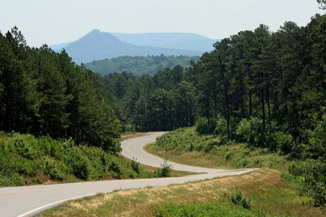 One of the many beautiful scenes in Arkansas from fields of flowers to majestic mountains.